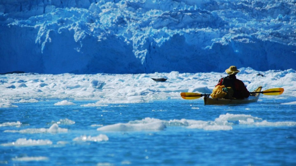אלסקה קיץ 2010