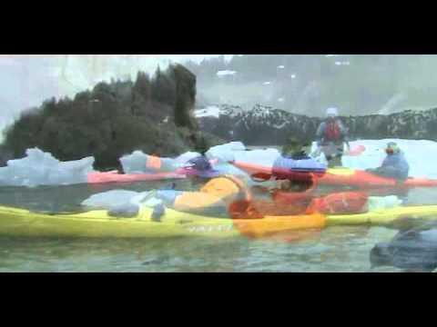 אופטימיסט באלסקה בקיץ הקר של 2008